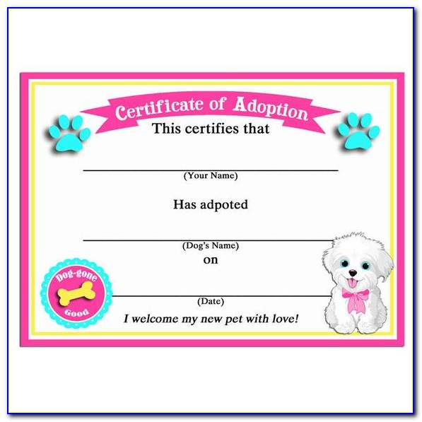 Scuba Certification Atlanta