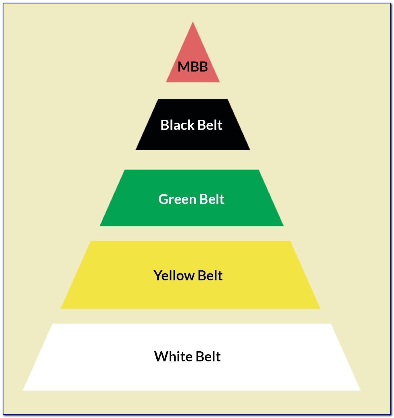 Six Sigma White Belt Certification Cost