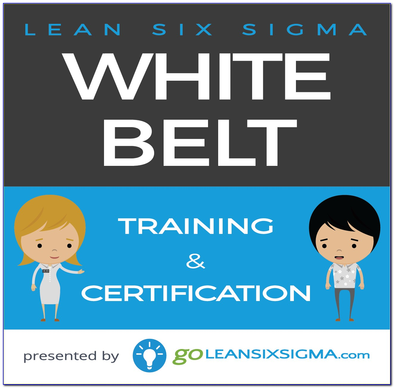 Six Sigma White Belt Certification In India