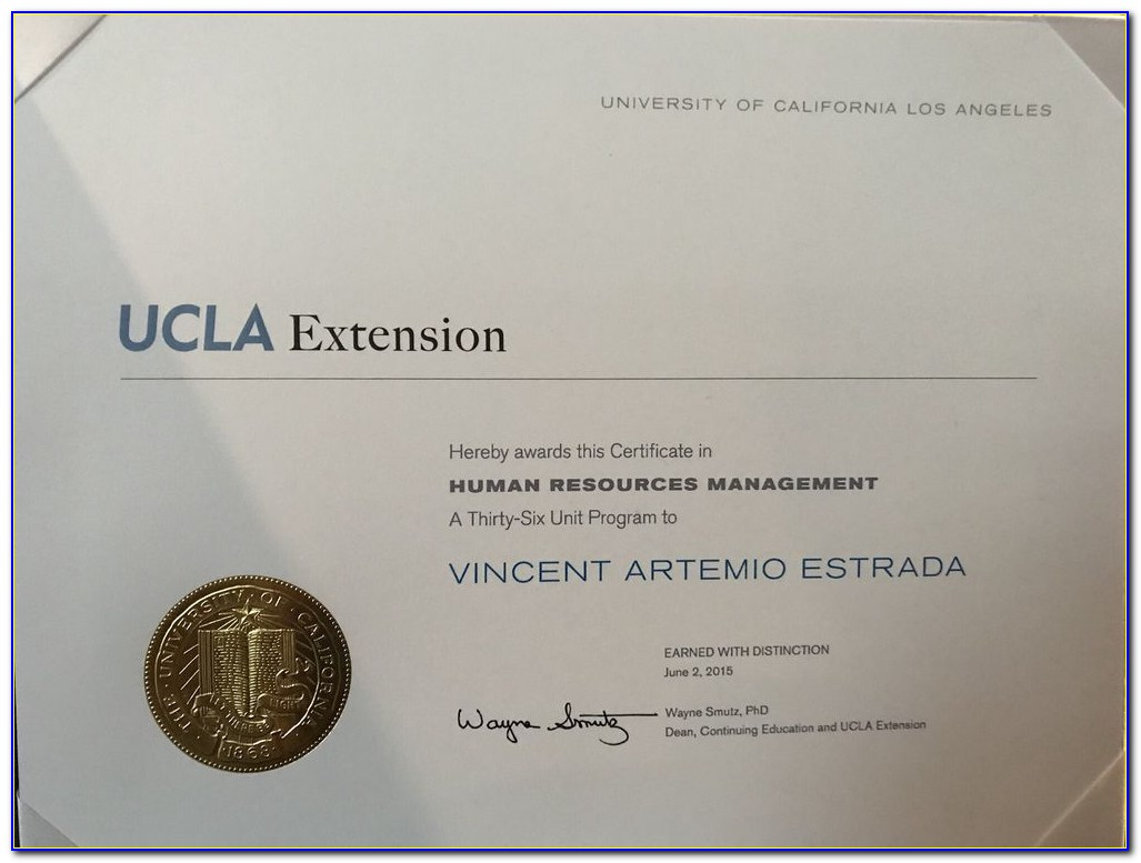 Ucla Extension Certificate In College Counseling