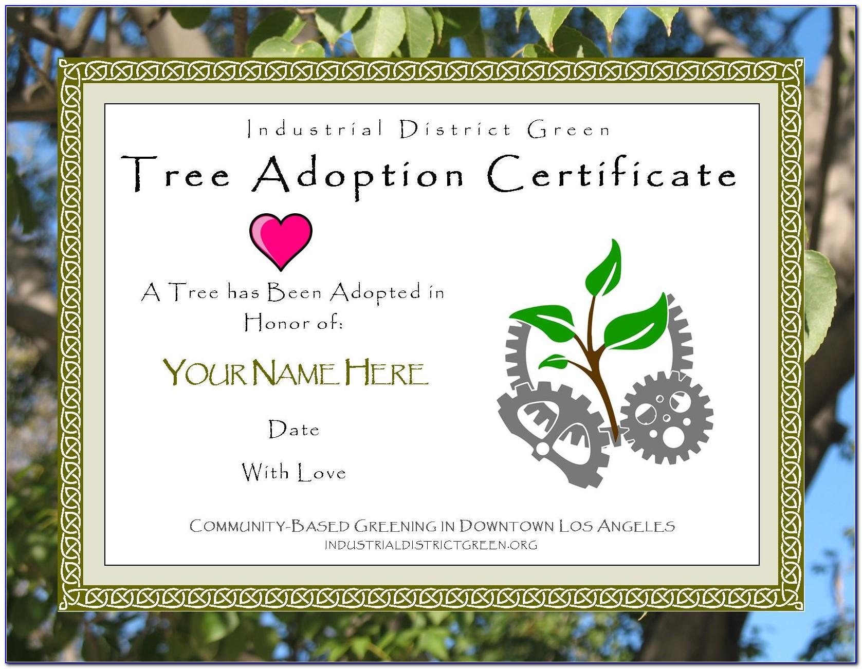 Verify Louisiana Teacher Certificate