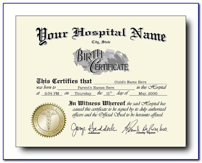 Vitalchek Birth Certificate Raised Seal