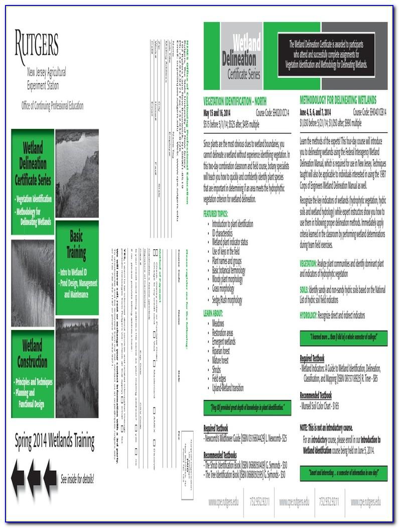 Wetland Delineation Certification Massachusetts