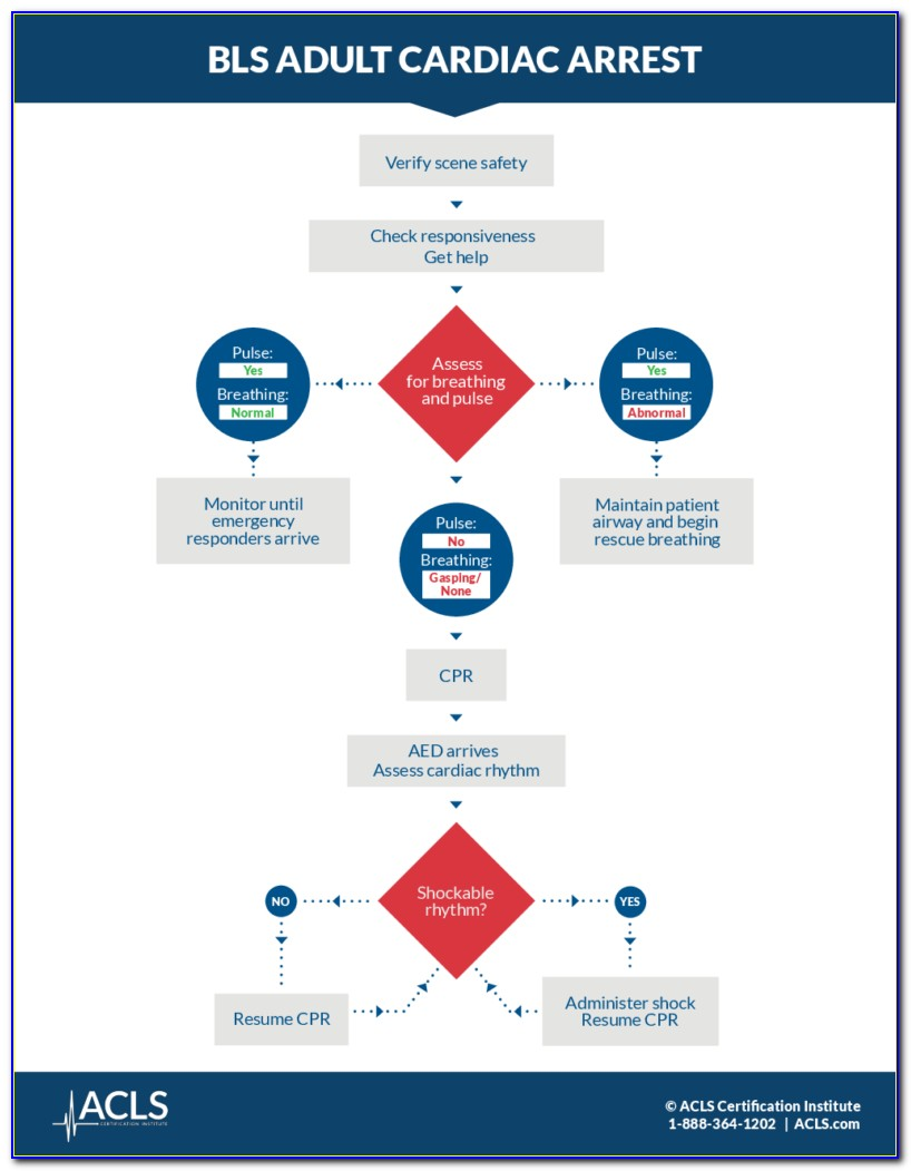 Bls Provider Certification Verification