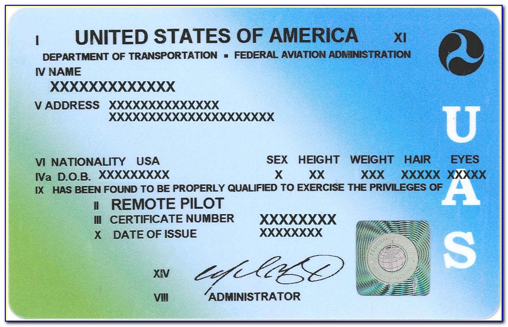 Faa Pilot Certificate Search