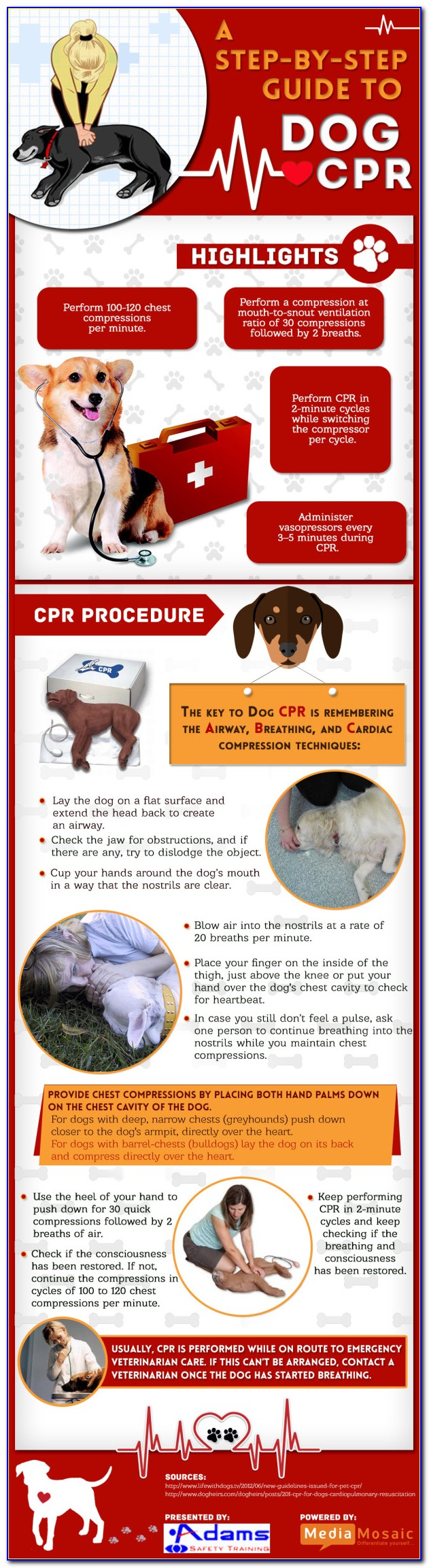 Free Pet First Aid Certification