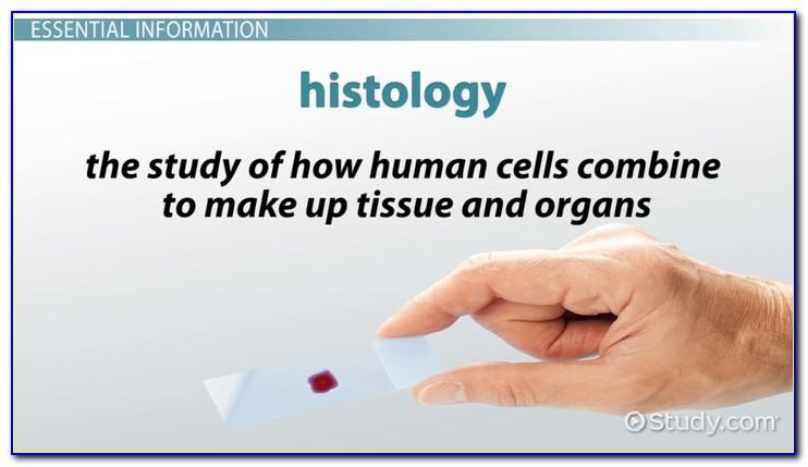 Histology Technician Certification Near Me