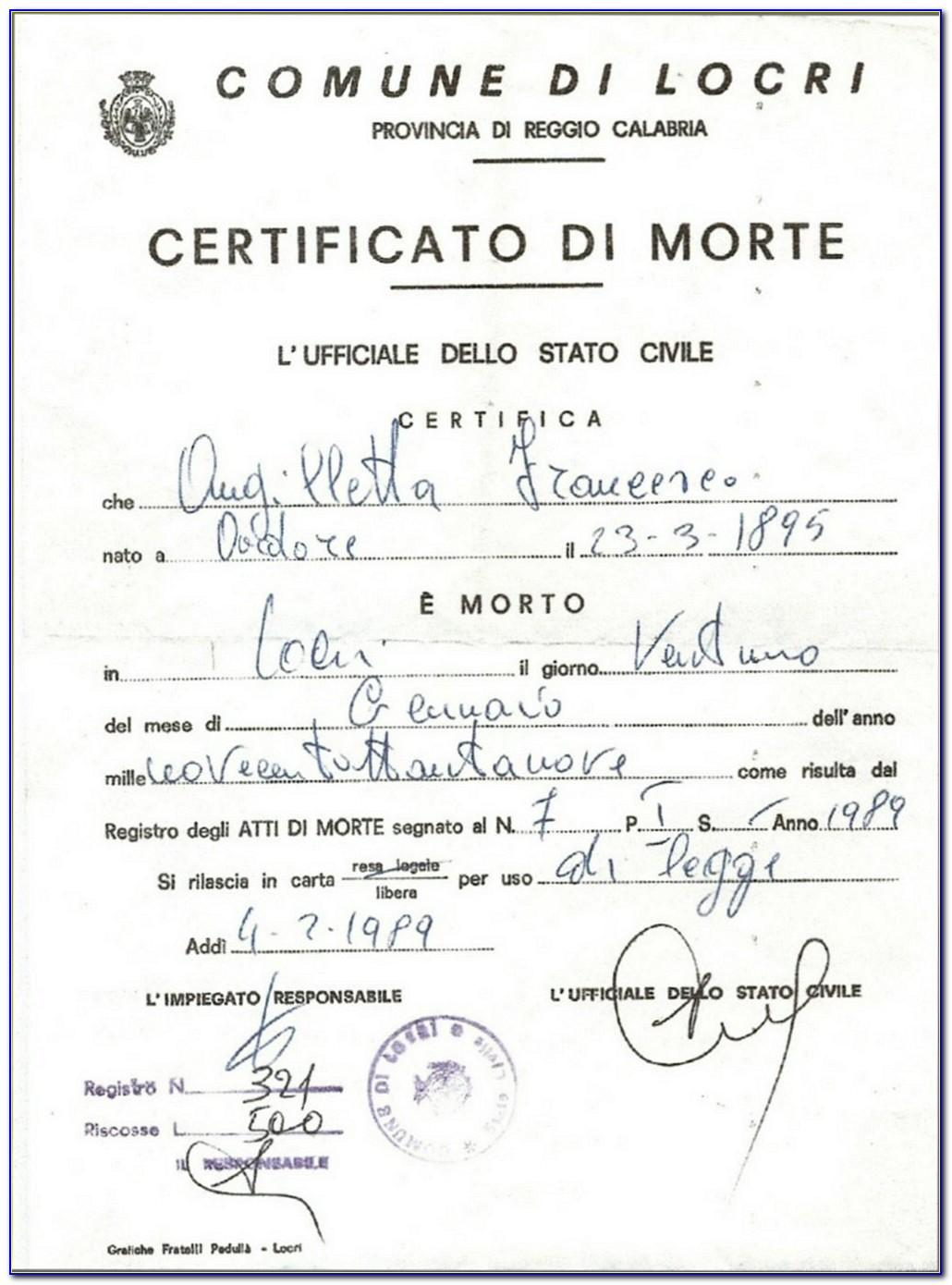 Italian Birth Certificate Translation Template