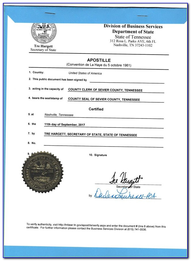 Njdoe Esl Certification