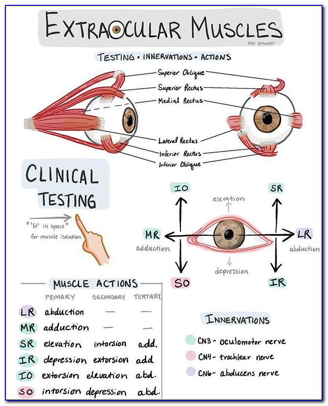 Optometric Technician Certification Texas