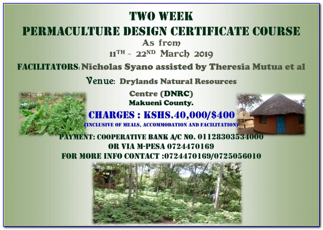 Permaculture Design Certificate Course Online
