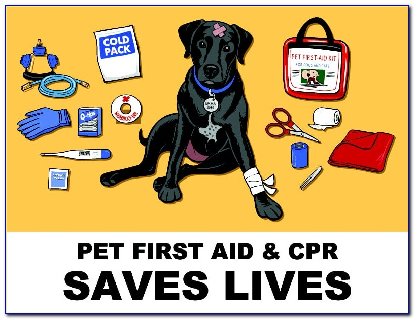 Pet First Aid Certification Online Free