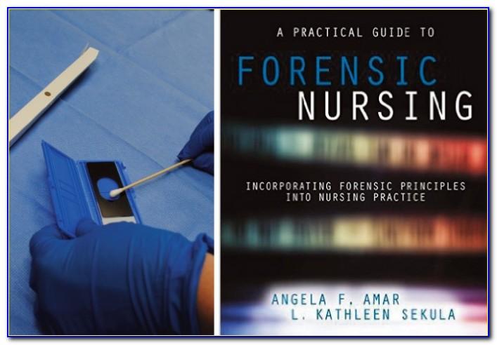 Sane Nurse Certification Michigan