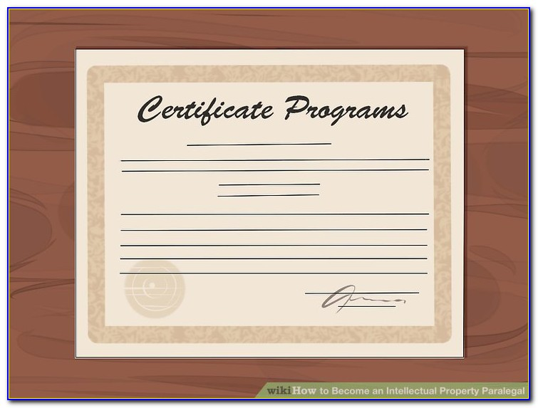 Windstorm Certificate Search